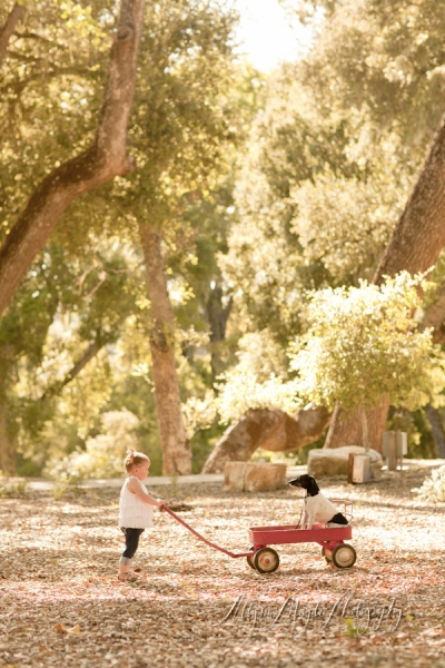 a girl, her dog + a wagon …  paso robles photographer children's, family