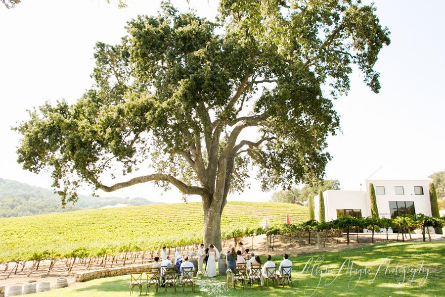 hammersky vineyards wedding ceremony paso robles, ca
