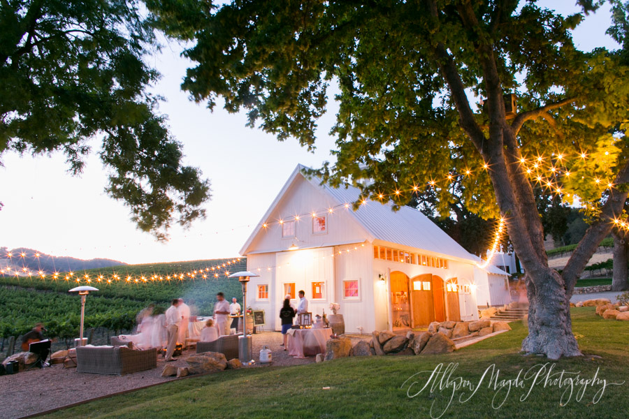 hammersky vineyards and winery wedding