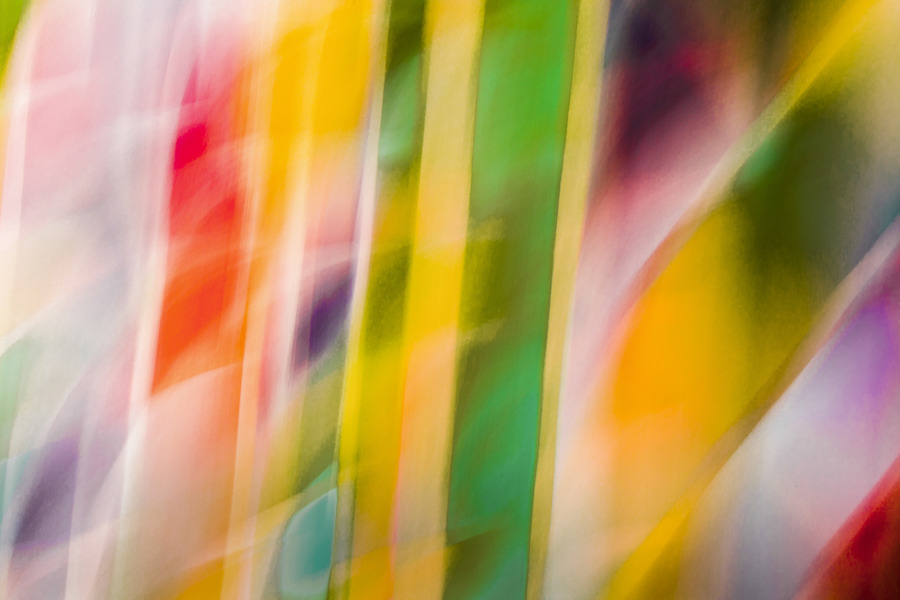 abstract photograph by allyson magda