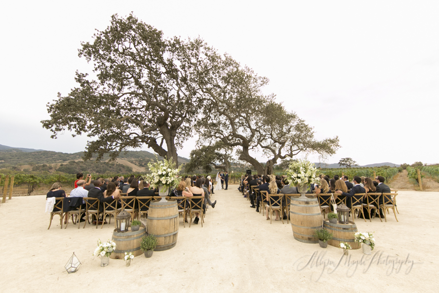 wedding-ceremony-vineyard-Sunstone-villa-winery-wedding