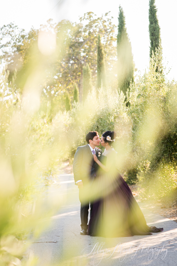 paso robles winery wedding photographer