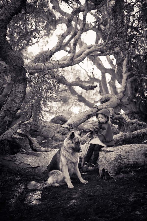 oso-the-shepherd_0787