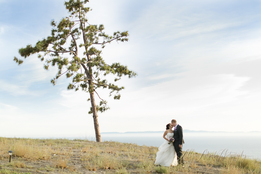catalina-view-gardens-wedding-terranea-resort-palos-verdes
