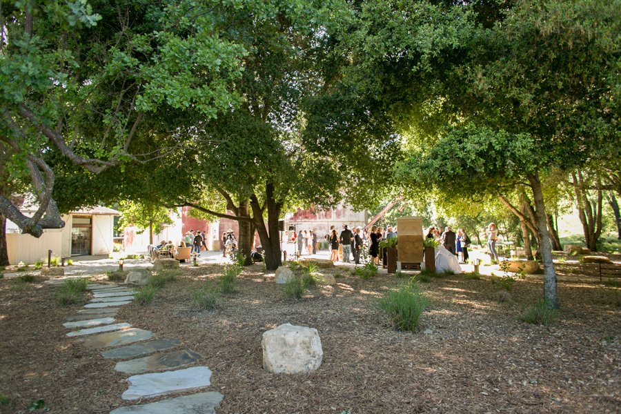 wedding reception halter ranch, paso robles